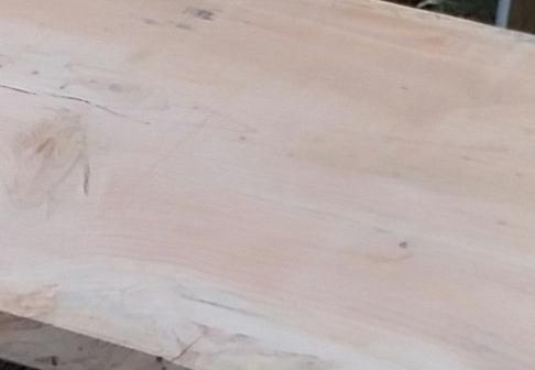 Cedar Close up